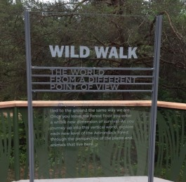 Wild Walk Opening